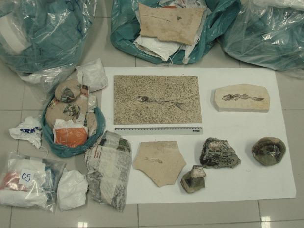 Segundo a Polícia Federal, pesquisadores foram presos com 236 amostras de material fossilífero da Chapada do Araripe. (Foto: Polícia Federal/Divulgação)