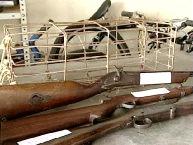 Armas apreendidas com caçadores, na região Centro-Oeste do estado. (Foto: Reprodução/TV Gazeta)