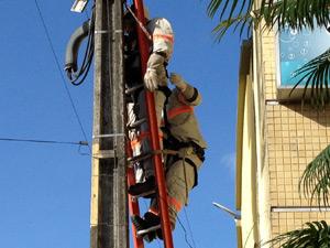 Equipamento de segurança evitou que homem despencasse da escada (Foto: Walter Paparazzo/G1 PB)