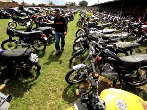 Visitação aos lotes pode ser feita nesta terça-feira e quarta-feira (Foto: Detran/ Divulgação)