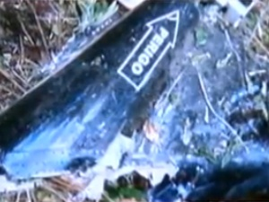 Imagens mostram destroços do helicóptero da Polícia Civil que caiu na zona rural de Piranhas (GO) (Foto: Reprodução TV Anhanguera)