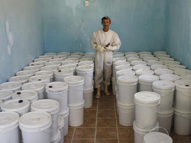 Apicultor Gilvan Barreto Queiroz, 50 anos, e parte da produção da cooperativa em Morpará (BA) (Foto: Glauco Araújo/G1)