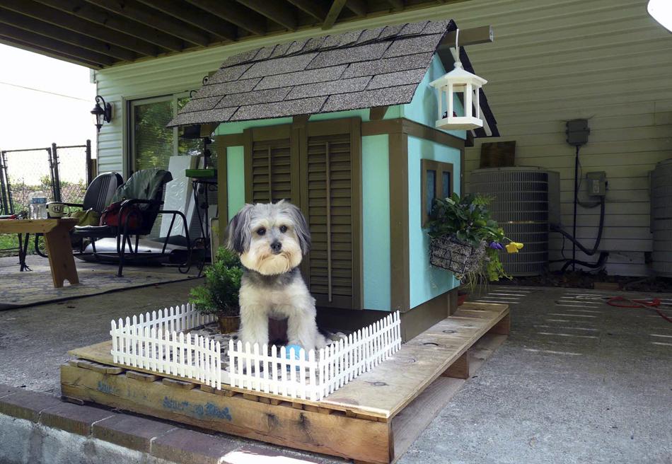 Casinha de cachorro vendida em um leilão em Virgínia.