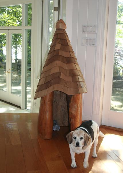 A casa de Lucy foi construída a partir de um único tronco recuperado em um pântano após o furacão Katrina.