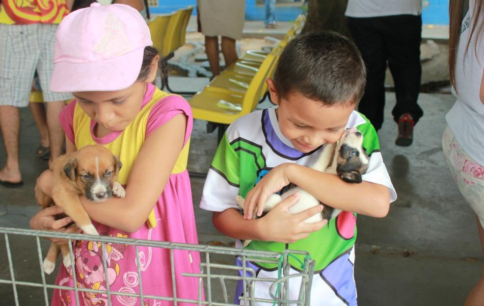 Veja galeria de fotos do evento de adoção de cães e gatos em Manaus - fotos  em Amazonas - g1