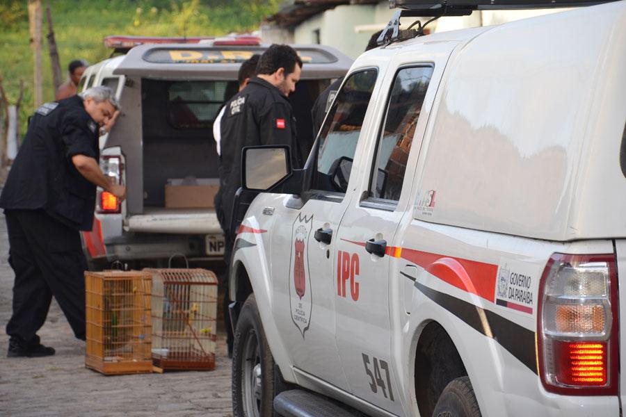 Aves foram apreendidas em casas de suspeito de participar do tráfico de drogas em João Pessoa, durante a Operação Liberdade