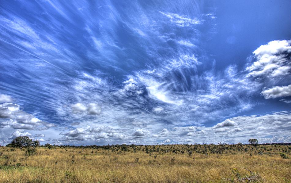 Imagem do Cerrado no Parque Estadual do Lajeado, no Tocantins. O fotógrafo Ricardo Martins percorreu Unidades de Conservação do estado por 45 dias para registrar a fauna, a flora, o ambiente e os costumes de diversos locais