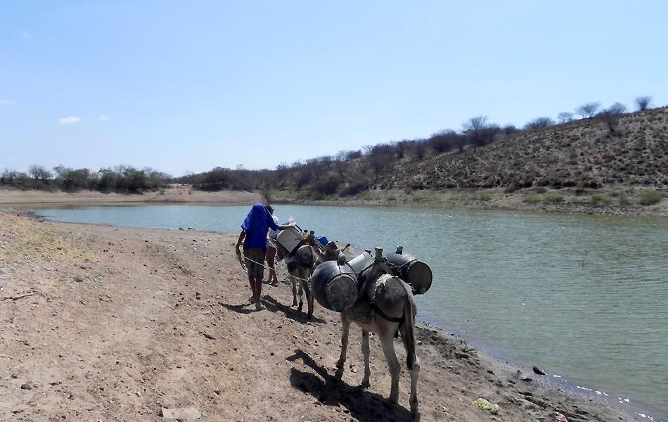 Moradores precisam andar quilômetros para buscar o pouco de água que ainda resta em alguns açudes