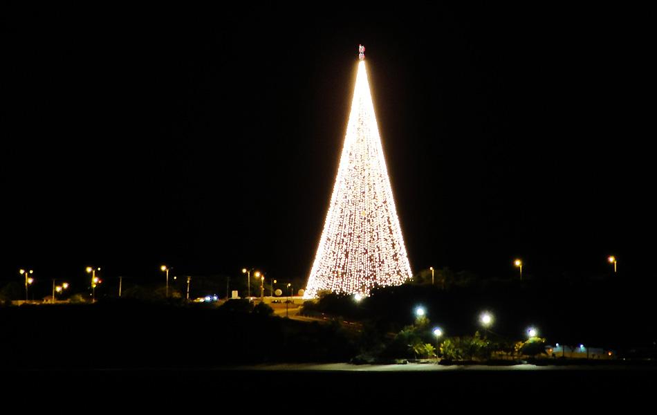 Árvore luminosa da Energisa tem 30 mil lâmpadas e pode ser vista de vários pontos da cidade