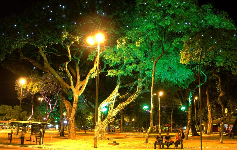 Árvores do Parque Solon de Lucena receberam pontos de luz