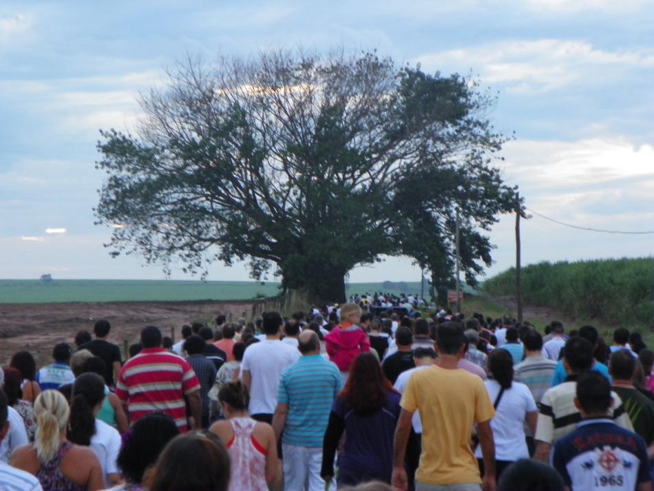 Procissão do Domingo de Ramos em Matão