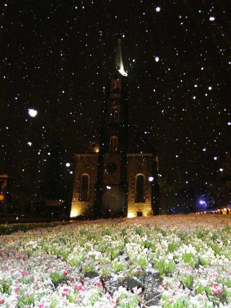 Flocos de neve caíram em Gramado, RS