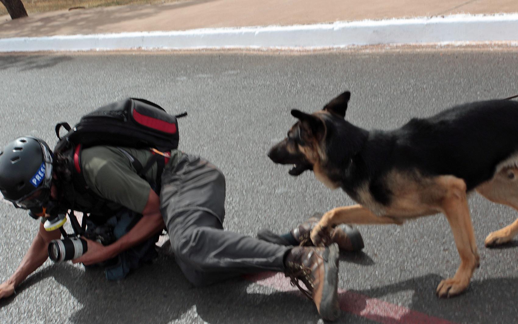 Depois de afastar os manifestantes próximo ao Estádio Nacional de Brasilia, policiais com cães agrediram dois fotógrafos: o da Folha, Fábio Braga (foto), e o fotógrafo Marcelo Marcelino.