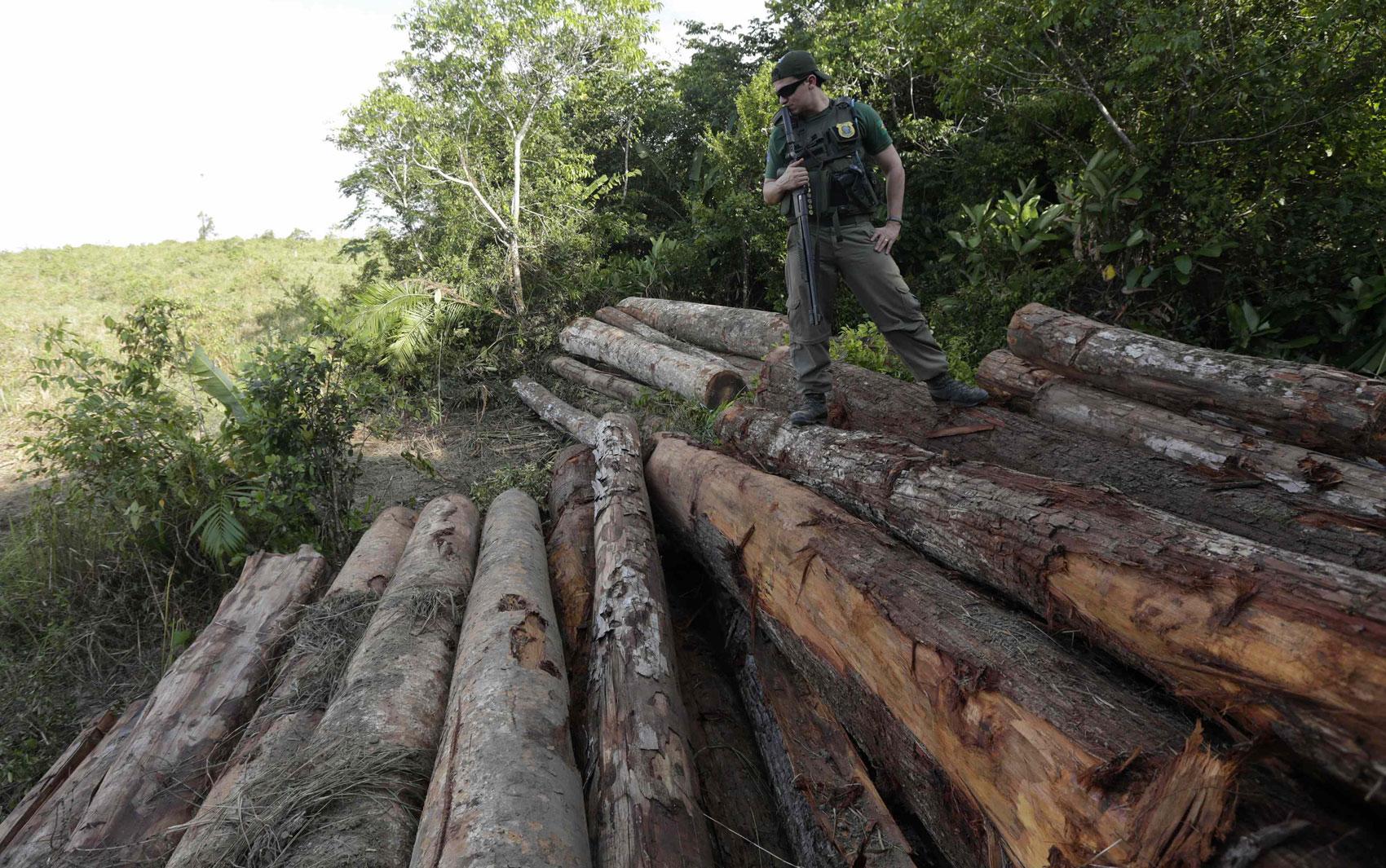 Homem trabalha em um garimpo de ouro ilegal perto de Morais Almeida  #838645 1700x1065