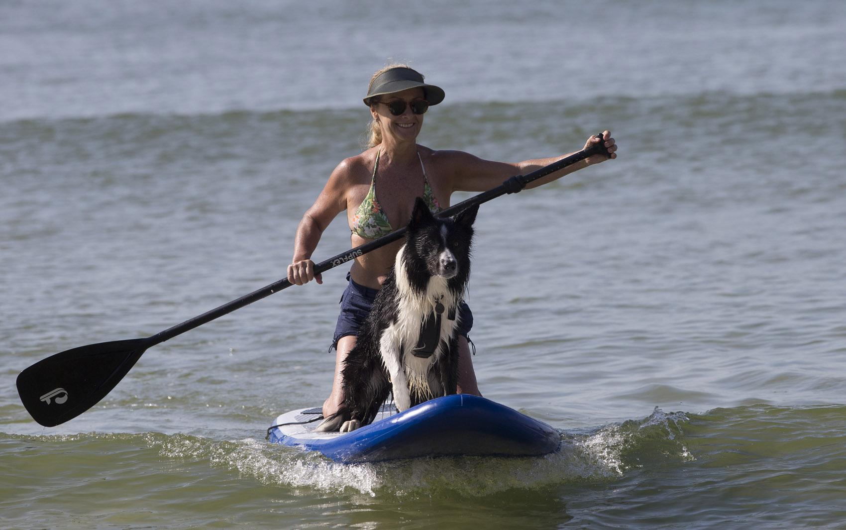 Bia Leal e seu cachorro Ozzy praticam stand-up paddle em praia no Rio de Janeiro.