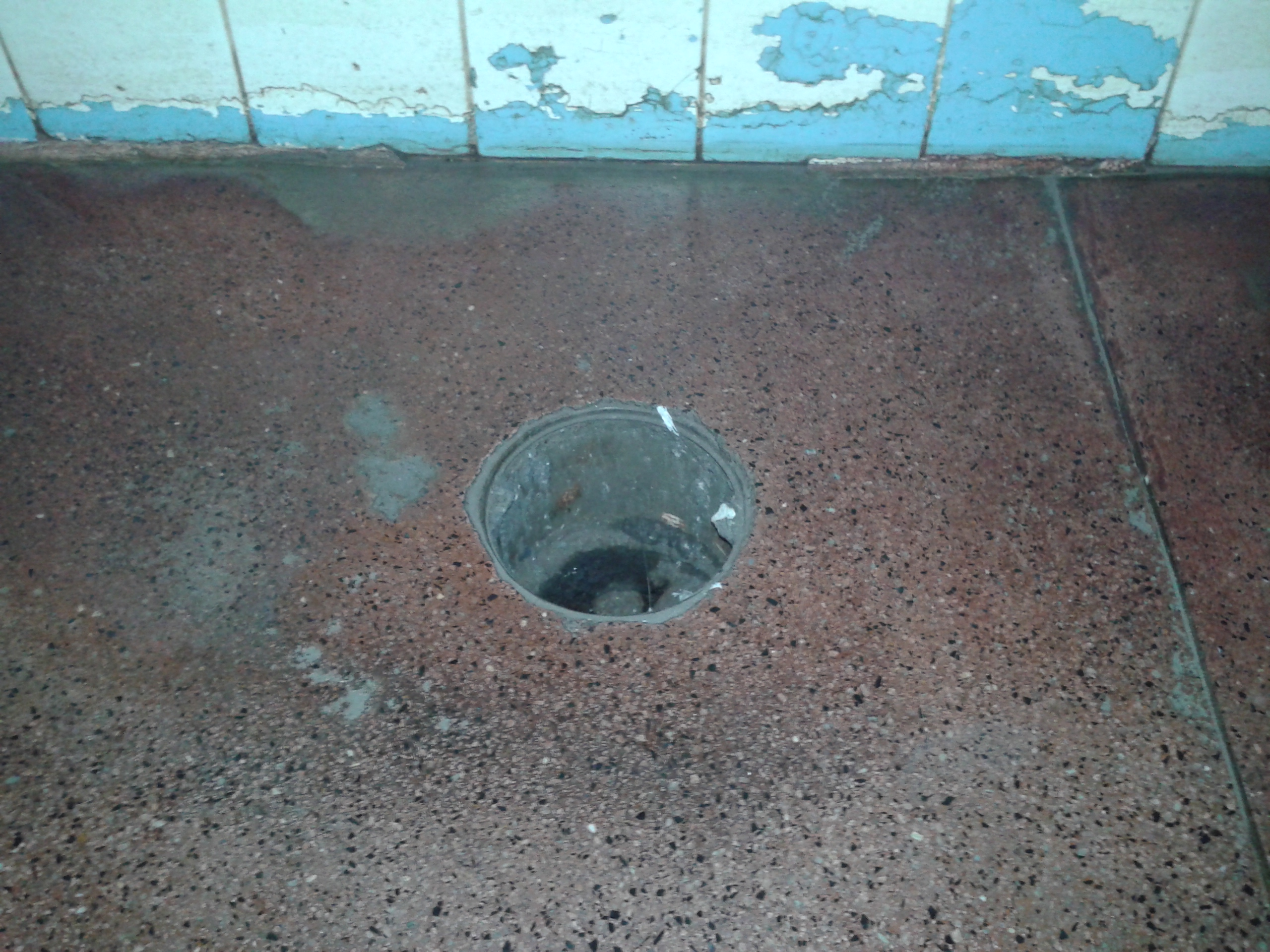 #1BA8B0 Veja fotos da Rodoviária de Araraquara fotos em São Carlos e  2560x1920 px Banheiro Interditado Placa 2915