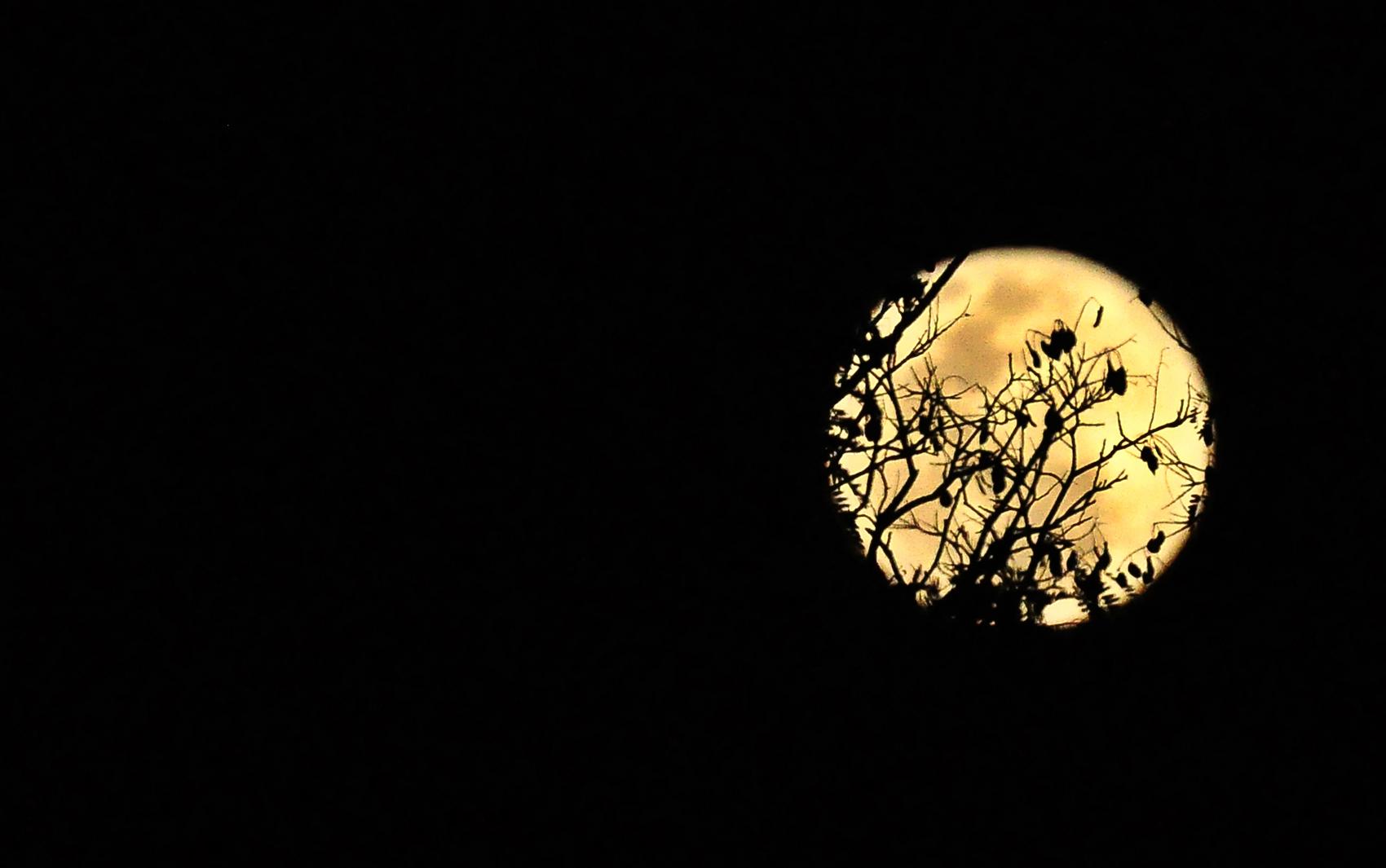 Lua clicada em Uberlândia (MG) por leitora do G1
