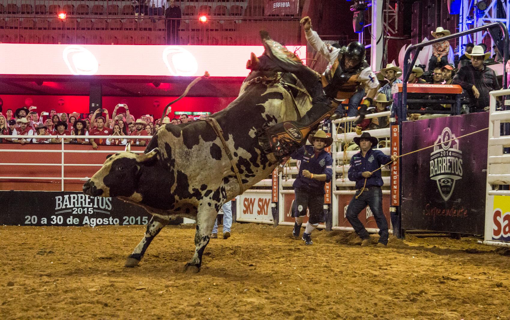 Peão compete em prova de montaria no rodeio internacional da Festa do Peão de Barretos