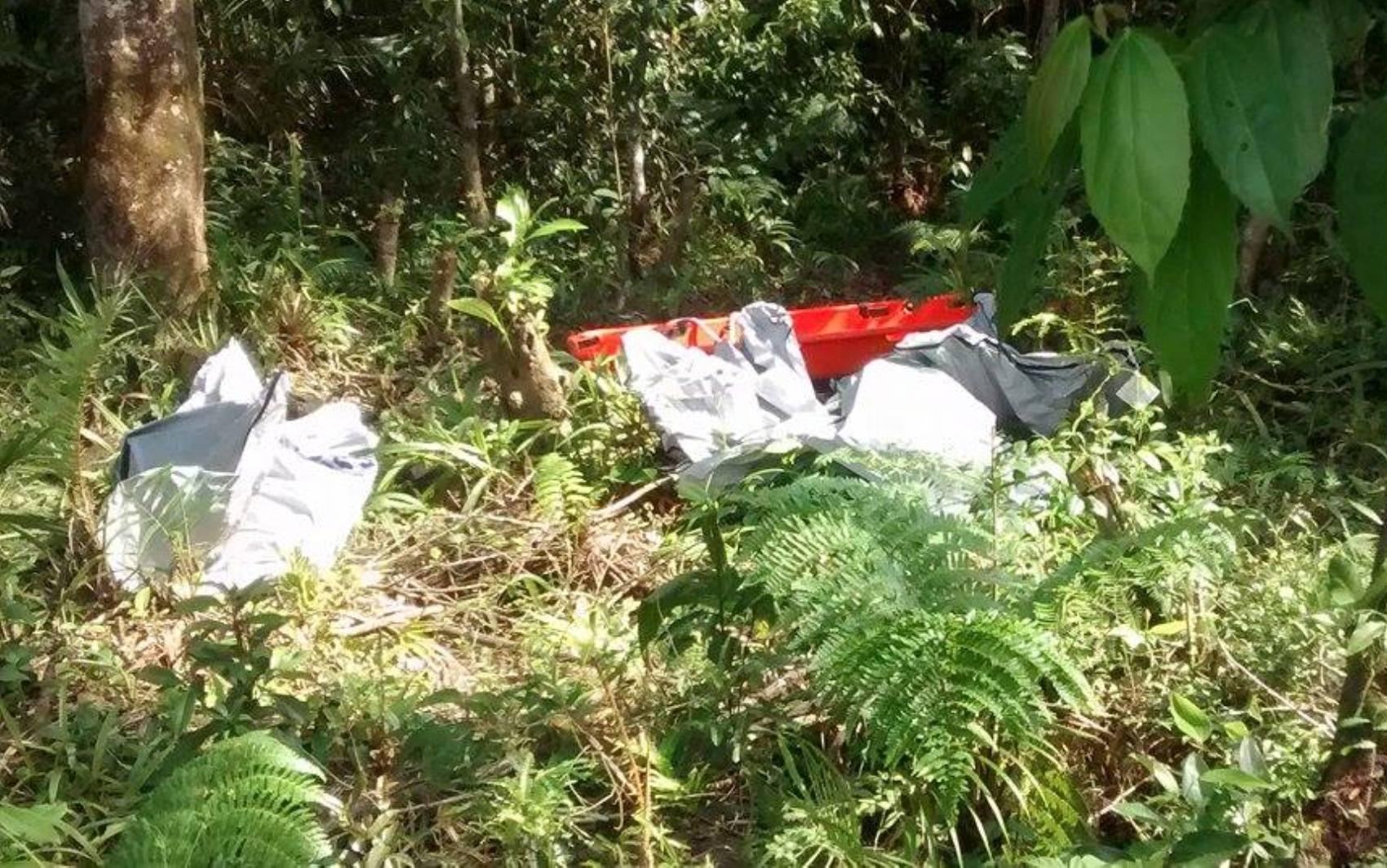 Bombeiros retiraram os corpos de vítimas após acidente aéreo