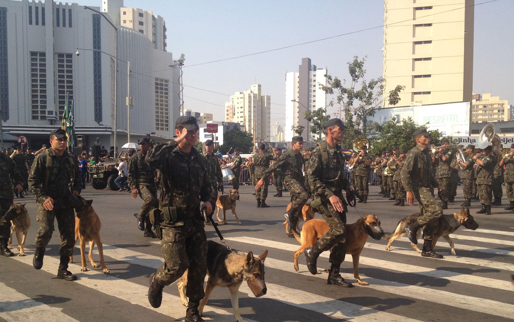 Exército desfila com cães na Avenida Tocantins, em Goiânia