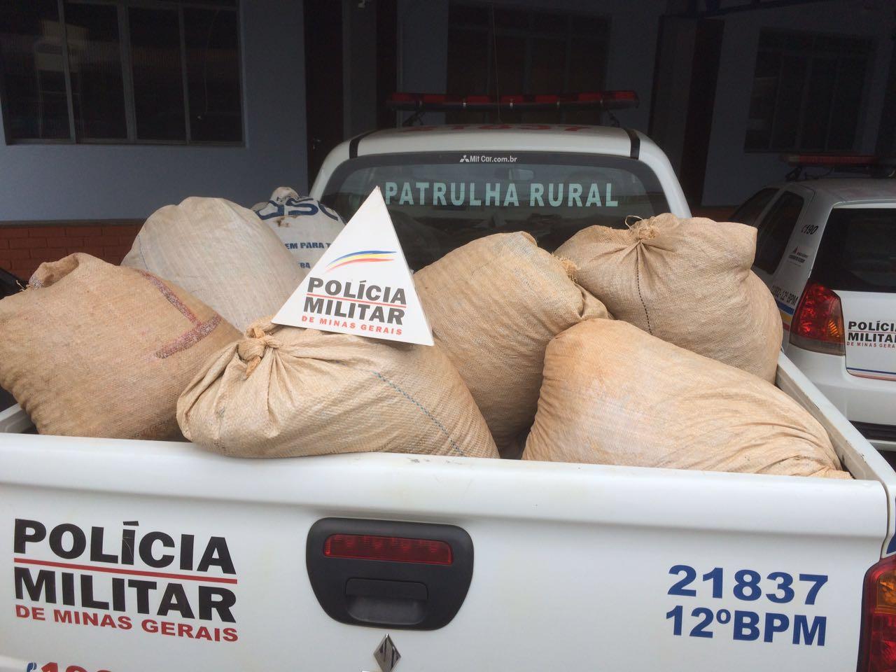 Sacas de café foram apreendidas e levadas à delegacia (Foto: Polícia Militar / Divulgação)