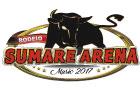 Logo Sumaré Arena Music 2017