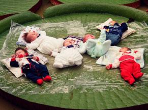 Bebês colocados sobre folhas de vitória-régia (Foto: Vitor Beal Estúdio Fotográfico / Divulgação)