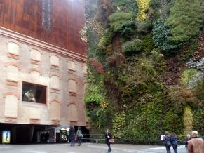Parede verde em Madri (Foto: Divulgação / Maria Elisa Feghali)