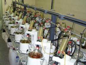 Laboratório Extracta Moléculas Naturais S/A (Foto: Divulgação)