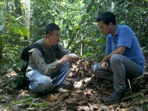 Globo ecologia: fungos da floresta (Foto: Divulgação/ Tiago de Barros)