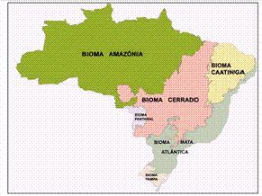 Mapa de biomas do IBGE (Foto: Reprodução)