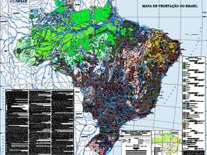 Mapa de vegetação do IBGE (Foto: Reprodução)