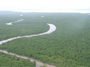 Rio Guapimirim é o destino do ecoturismo (Foto: Divulgação)