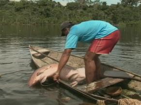Pescadores na região amazônica (Foto: Reprodução de TV)