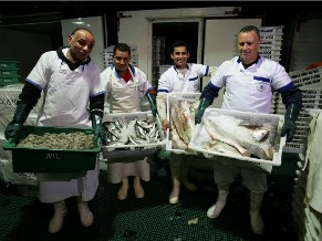 Fiscalização de pescados (Foto: Divulgação / MPA)
