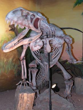 Museu Ciências da Terra (Foto: Divulgação)