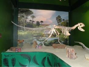Museu de Geodiversidade (Foto: Divulgação)