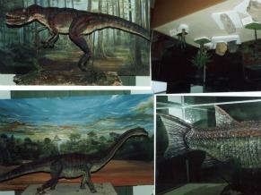Museu de História Natural de Sao Luis (Foto: Divulgação)