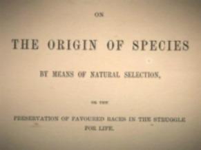 Globo Ciência: a origem das espécies (Foto: Divulgação)