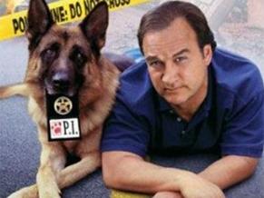 k9 um policial bom pra cachorro (Foto: reprodução/divulgação)