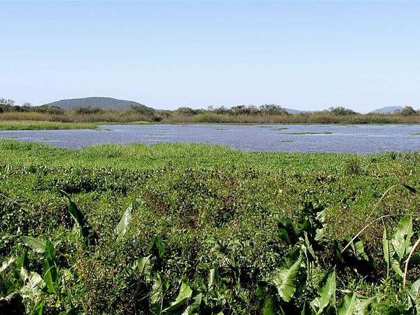 Banhados (Foto: Divulgação)