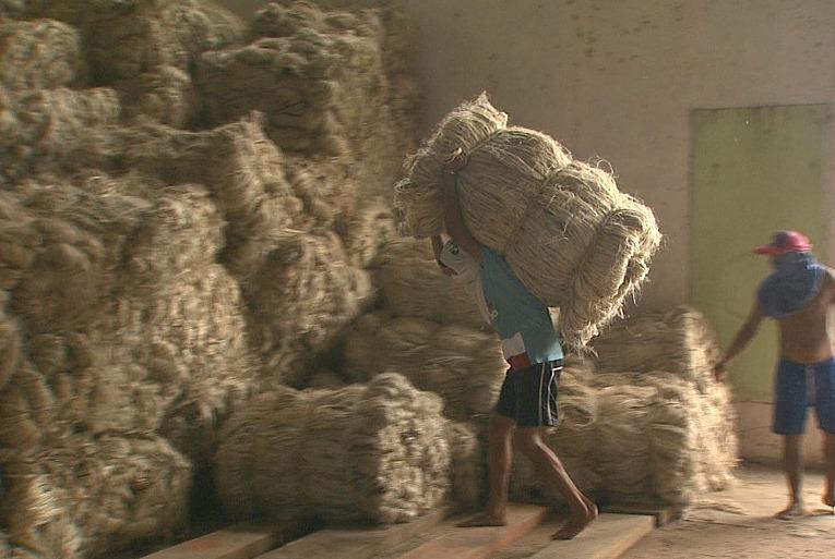 A carência de compradores é outra dificuldade dos produtores (Foto: Jornal do Amazonas)