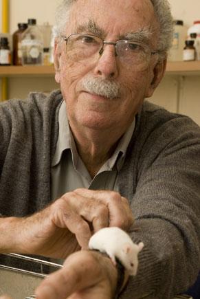 Michel Rabinovitch (Foto: Bob Paulino)
