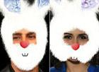 Reconheça os coelhinhos da telinha da Globo (divulgação)