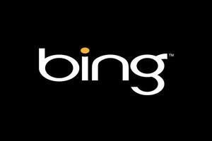 Bing (Foto: Divulgação)