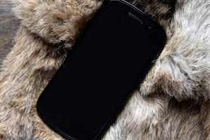 Google Nexus Prime (Foto: Reprodução/BGR)