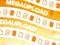Megaupload pode perder o seu acervo de dados ainda nesta semana (Foto: Reprodução)