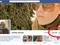 """Uma """"cutucada"""" ao serviço do Hangout do Google+, Facebook começa a testar nova ferramenta (Foto: Reprodução/TheCrunch)"""