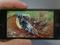 Filmes em widescreen no iPhone 5 (Foto: Divulgação)