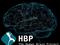 O Projeto Cérebro Humano (Foto: O Projeto Cérebro Humano)